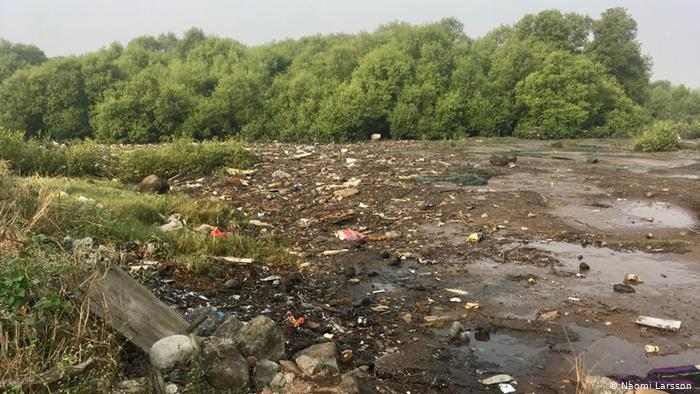 Debris dumping killing Kamothe creek mangroves