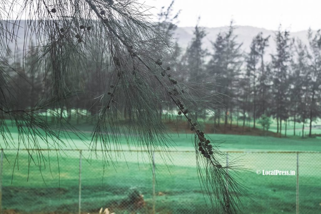 Spread the Beauty Outside Kharghar Golf Course