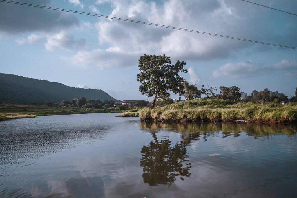 The Pristine Kharghar Lake in Sector 35