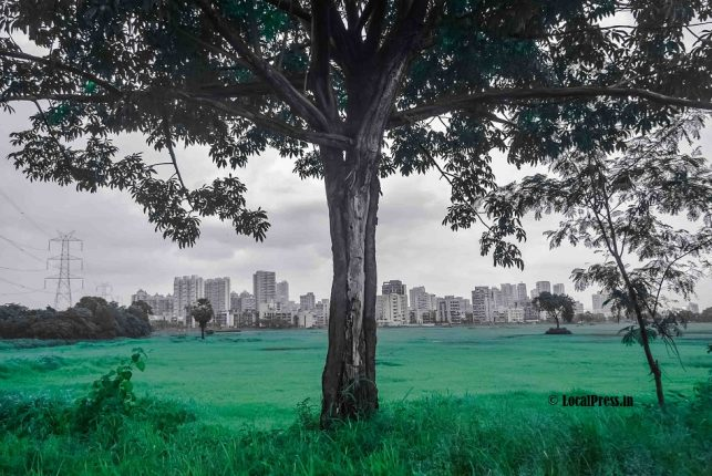 Kharghar turns green, waterfalls & ponds overflow, but visitors stay away