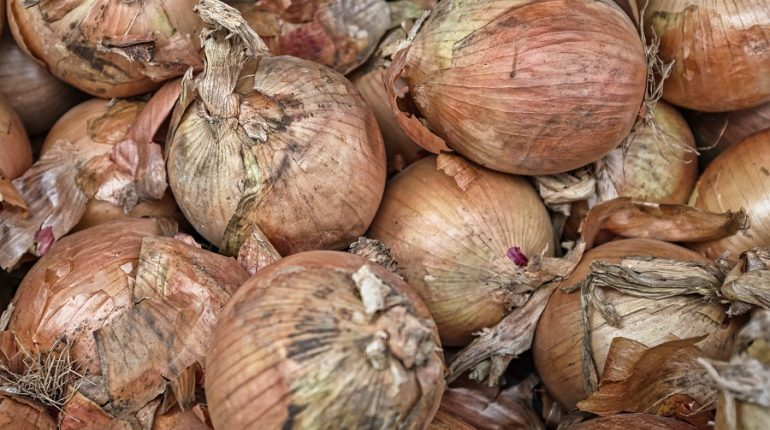 Onion and vegetable prices skyrocket in Navi Mumbai as supplies dip at APMC