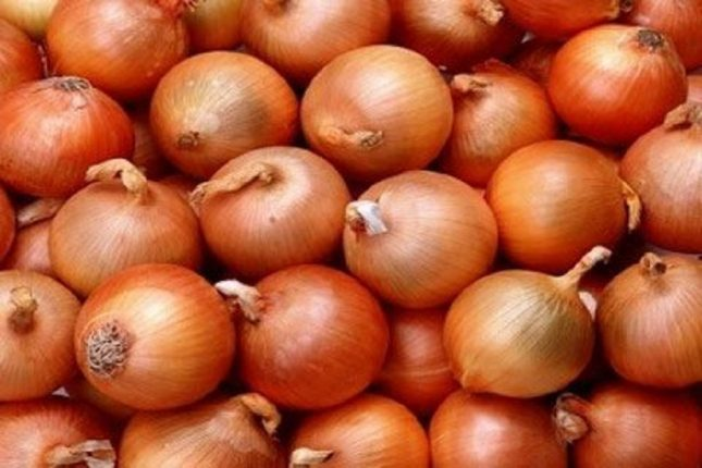 Onions imported from Iran fail to make up for onion shortage in Navi Mumbai