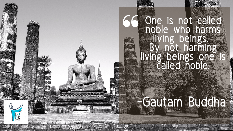 44 Real Lord Gautam Buddha Quotes & Sayings 36