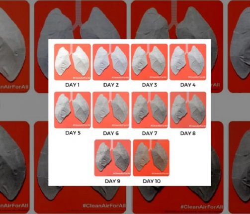 These are your lungs, just 10 days in Kharghar